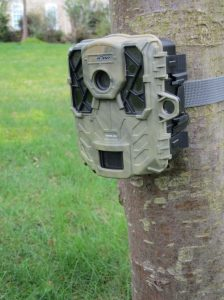 Trail camera. Copyright NYMNPA.