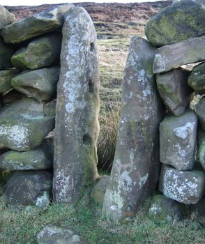 Stone sheep creep built into drystone wall - Beak Hills, Raisdale - copyright Ami Hudson, NYMNPA.