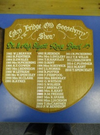 Egton Gooseberry Show 1 August 2017. Copyright Ami Walker.