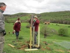 NPA Volunteers planting in-field trees on a farm near Goathland. Copyright TELoI.