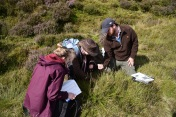 Abi, Bernadine and Sam carrying out a botanical survey, Rosedale. Copyright TELoI.