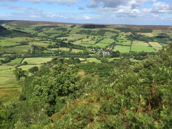 View from Chimney Bank down into Rosedale. Copyright NYMNPA.