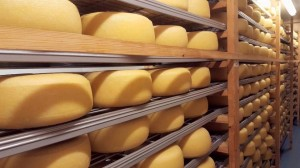 Inside Lyburn Cheese Factory. Copyright Julie Melin-Stubbs, New Forest National Park Authority.