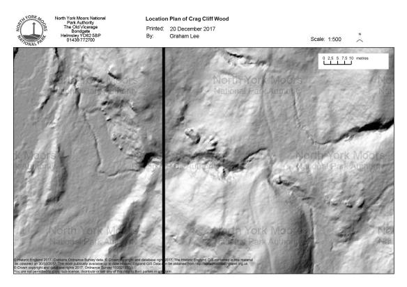 LiDAR - Cragg Cliff Wood, Grosmont. Copyright NYMNPA.