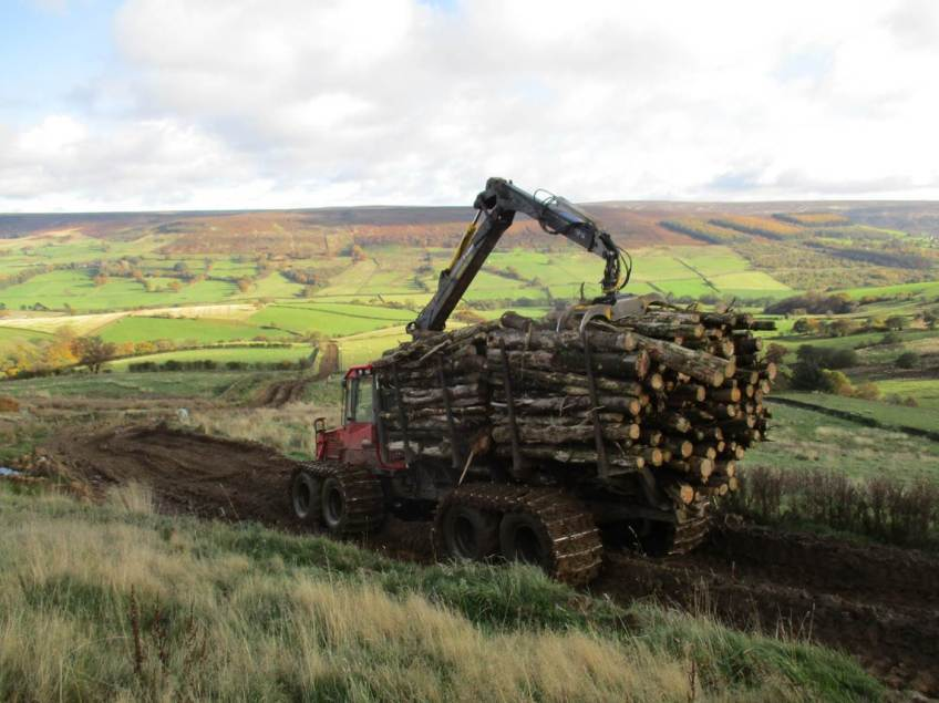 Felled timber being removed from site. Copyright NYMNPA.