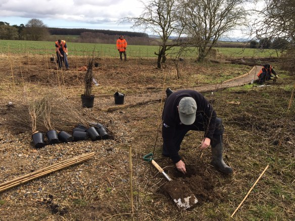 Creating our first community reserve for Turtle Doves - at Sawdon. Copyright NYMNPA.