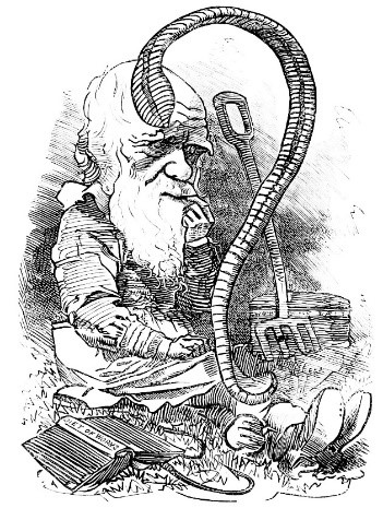 Cartoon of Charles Darwin in Punch magazine (1881) - he studied worms for many years, even playing music to them!