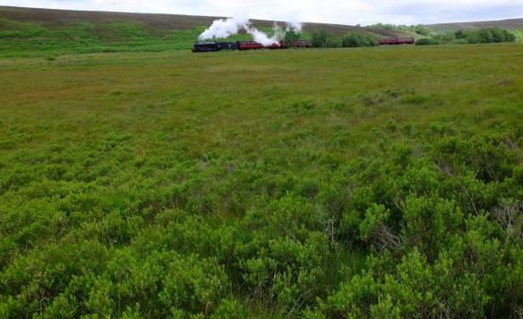 View of North Yorkshire Moors Railway crossing Fen Bog. Copyright NYMNPA.