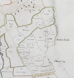 Extract from map of Bilsdale from 1781, by William Calvert. From Feversham Collection, North Yorkshire County Record Office.