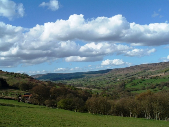 Landscape view - looking north up Farndale. Copyright NYMNPA.