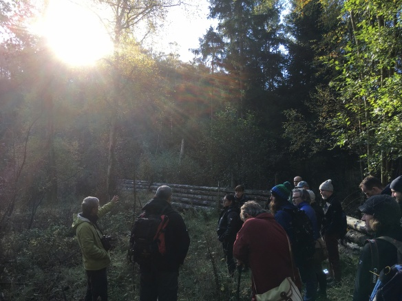 Cropton Forest with the Forestry Commission, TWOG visit Oct 2018. Copyright NYMNPA.