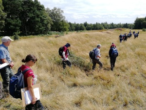 Volunteers surveying earthworks at Cawthorn Roman Camps. Copyright NYMNPA.