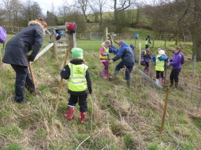 Explorer Club, tree planting. Copyright NYMNPA.