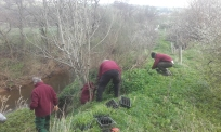 Volunteers, woodrush planting. Copyright NYMNPA.