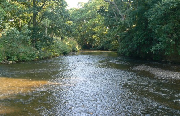 Image of the River Esk, August 2013. Copyright Sam Jones, NYMNPA.