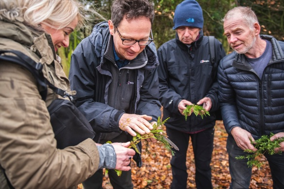 Finding out how to identify tree species. Copyright Daniel Wildey.