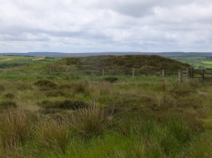 Round barrow on Howdale Moor. Copyright NYMNPA.