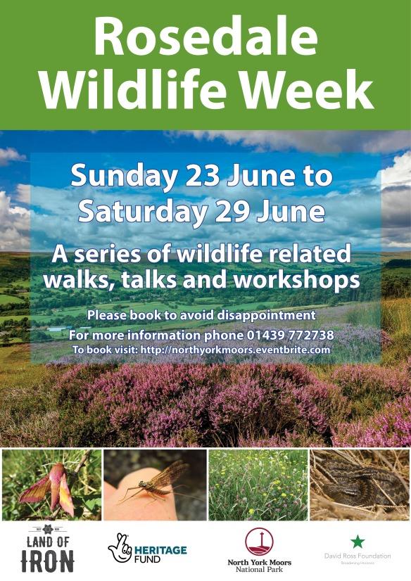 Rosedale Wildlife Week poster. Copyright NYMNPA.