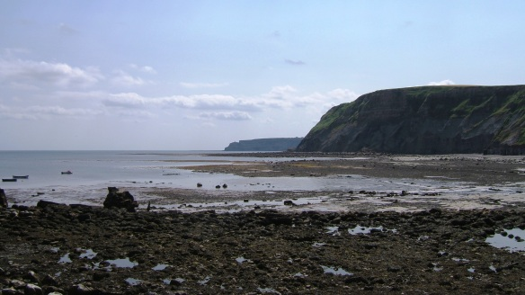 Coastal landscape near Port Mulgrave - tide out. Copyright NYMNPA.