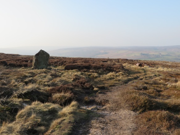 Danby Rigg standing stone and ring cairn. Copyright NYMNPA.