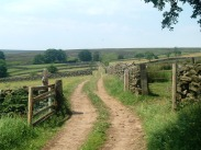 Bridleway in Hartoft - summer. Copyright NYMNPA.