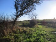 Looking south from Overdale Woods to Lythe Church - by Claire Bending