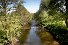 River Esk at Lealholm by Chris Ceaser