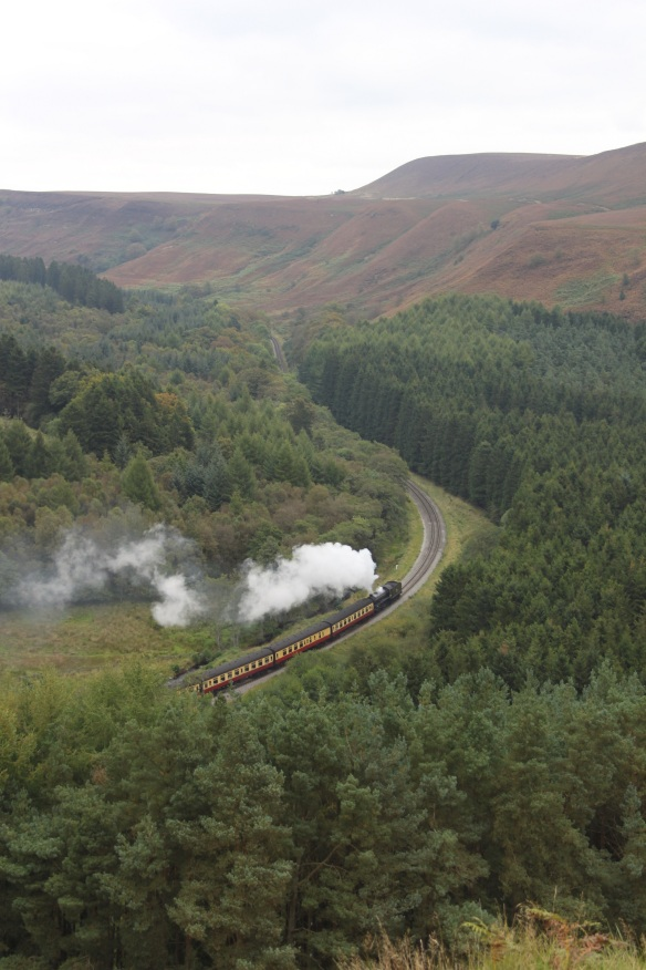 Levisham Estate - steam train. Copyright NYMNPA.