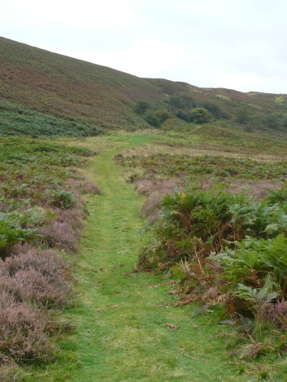 Levisham Estate - moorland path. Copyright NYMNPA.