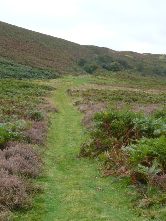 Levisham Estate - moorland path. Copyright NYMNPA.