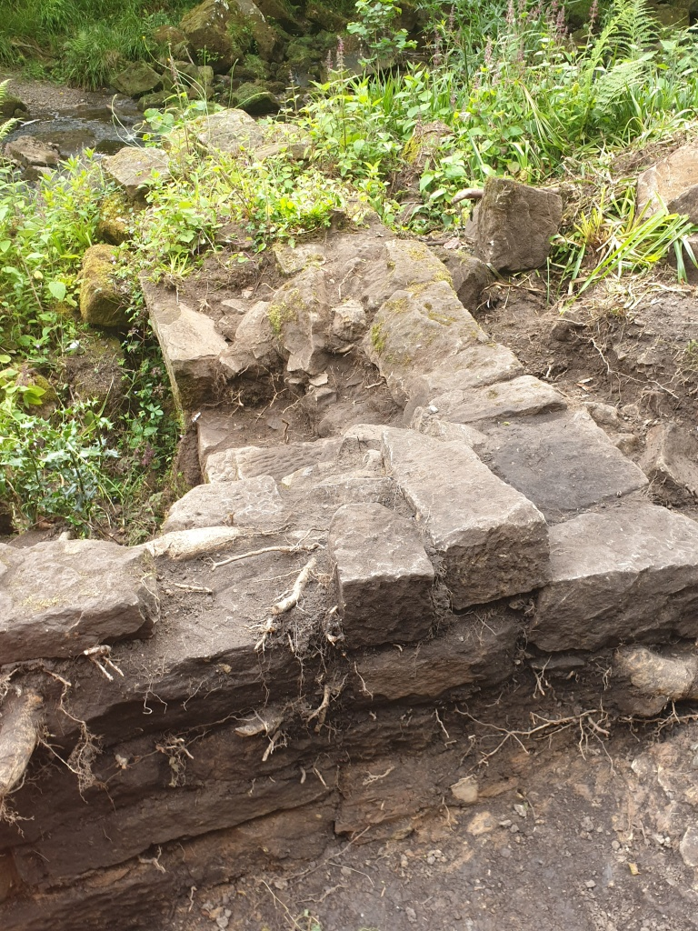 Photos show before and after of my hard work on the wall around the wheel pit in Combs Wood. Copyright NYMNPA.