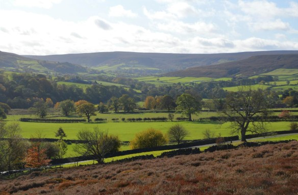 Autumn colours in Westeredale. Copyright NYMNPA.