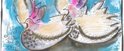 Doodle a Dove - drawing by Sophie Thompson. Copyright NYMNPA.
