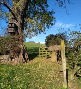 Low Crookleith Farm, Bilsdale - FLO visit 30.10.20. Copyright NYMNPA.
