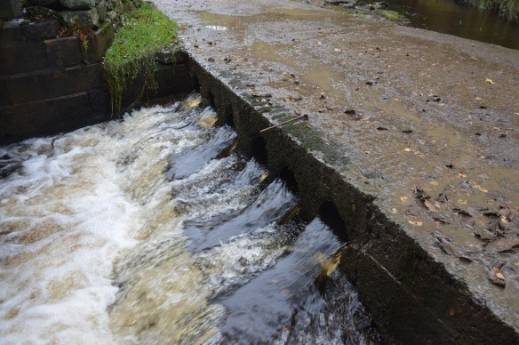 Example of an In channel obstacle for fish passage. Copyright NYMNPA.