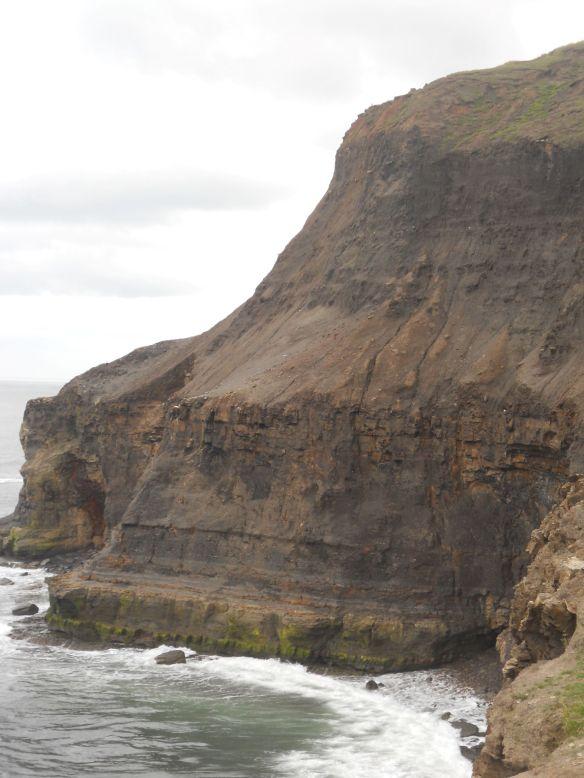 Kettleness Cliffs. Photo credit Dr Crispin Little, University of Leeds.