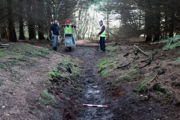 Volunteers repairing prehistoric dyke (Scheduled Monument) in Cloughton Woods. Copyright NYMNPA.