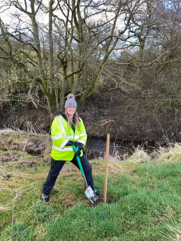 Amy from the Ryevitalise Team - tree planting task Feb 2020. Copyright NYMNPA.