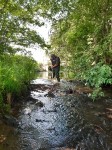 Riverfly monitoring in the Rye Catchment. Copyright Sam Lewsey, NYMNPA.