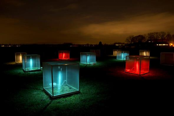 Research to assess the impact of artificial light on insects is ongoing. In mini-ecosystems in the Netherlands, researchers test the effects of artificial light. Credit: Kamiel Spoelstra/NIOO-KNAW.
