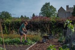 Helmsley Walled Garden Credit Polly Baldwin/ NYMNP