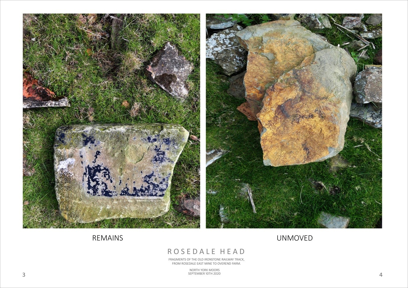 ROSEDALE HEAD - REMAINS, UNMOVED